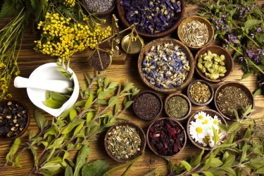 The Use of Herbal Medicine Is Long and Widespread