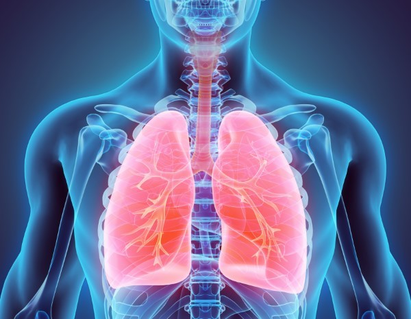 Helpful Tips For Healthy Lungs